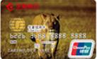 华夏寻梦非洲系列信用卡AA07(华夏缤纷系列)